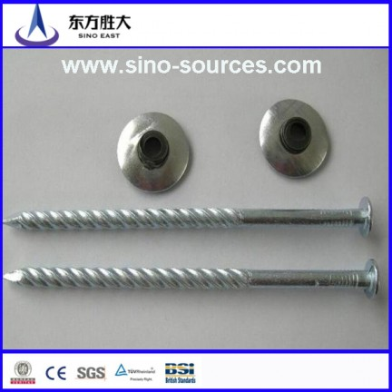Galvanized nail with ring shank
