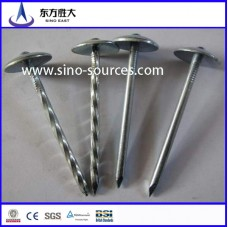 hot dipped Gi roofing steel nails