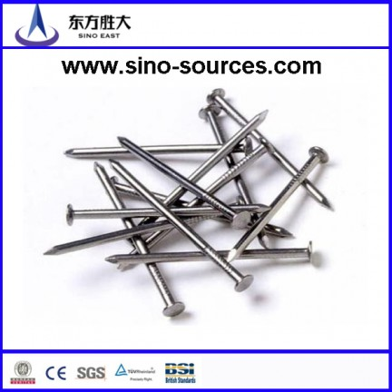 Umbrella head smooth shank roofing galvanized nails