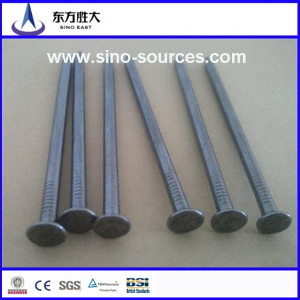 Wholesale Galvanized Steel Nails